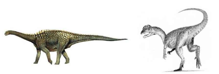 ammosaurusdilophosaurus