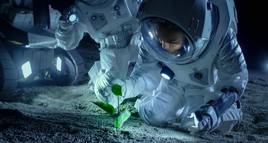 Astrobotanik Eğitiminde STEM Uygulamaları